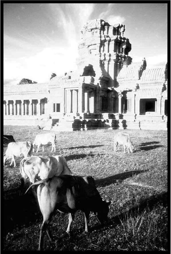 Анкор в 1920-х годах