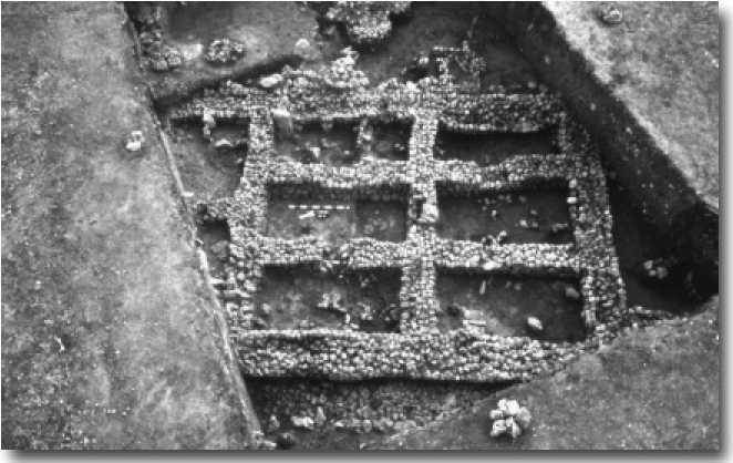 Вид сверху на место раскопок в Чайоню
